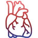 ศูนย์หัวใจและหลอดเลือด